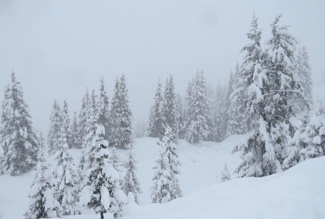 Heavy Snow Hits Austria | Welove2ski