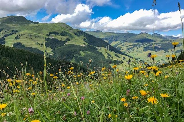 Ski Deals June 9, 2019 | Welove2ski
