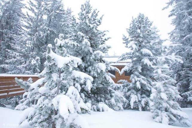 Heavy Snow Kicks Off a Wintry Week in the Alps   Welove2ski
