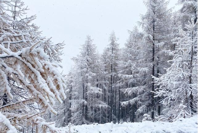 Heavy Autumn Snow in the Alps | Welove2ski.com